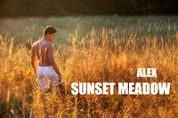 Alex 2012 (Sunset Meadow)